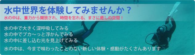 水中世界を体験してみませんか?